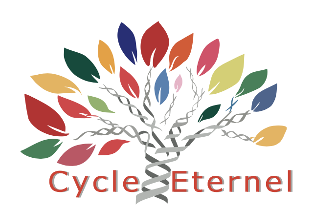 Cycle-eternel